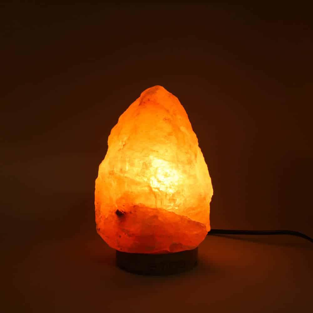 coral-himalayan-salt-lamp-2
