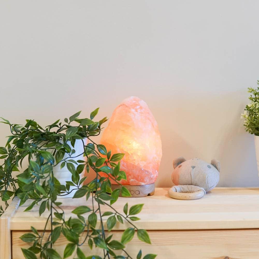 coral-himalayan-salt-lamp-4