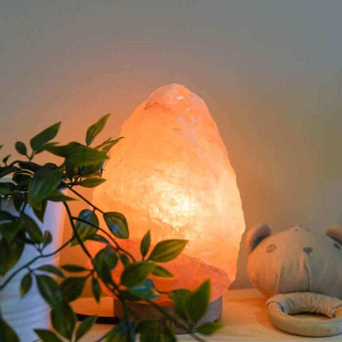 coral-himalayan-salt-lamp-3